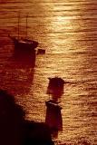 golden-sea.jpg