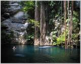 Cenote  Sink Hole'