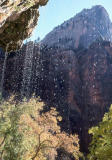 Weeping Rock in the Fall (Zion)