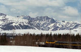 Train to Denali