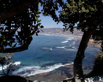 Views along the La Jolla Coast