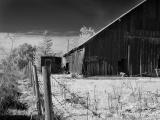 Barn and shed (infrared)