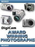 Award Winning Photographs