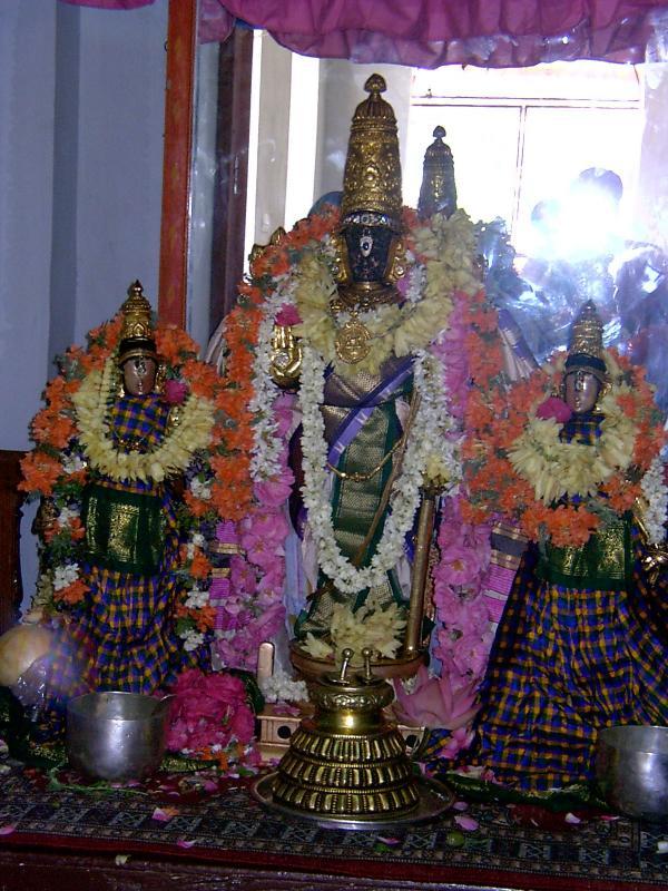 Parthasarathi8