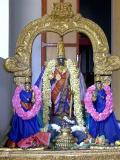 Parthasarathi6