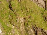 Cliffs at Slea Head