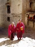 82 year-old pilgrim.