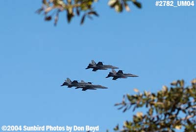 USN F/A-18 Hornets VFA-201 over Miami Lakes military aviation stock photo #2782