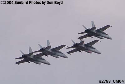 USN F/A-18 Hornets from VFA-201 over Miami Lakes military aviation stock photo #2783