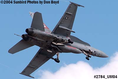 USN F/A-18 Hornet #162904 VFA-201 over Miami Lakes military aviation stock photo #2784
