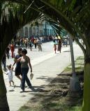 Parque Leoncio Vidal on a sunday morning