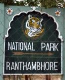 Click for the Ranthambhore trip report
