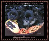 Brite Star Halloween Card