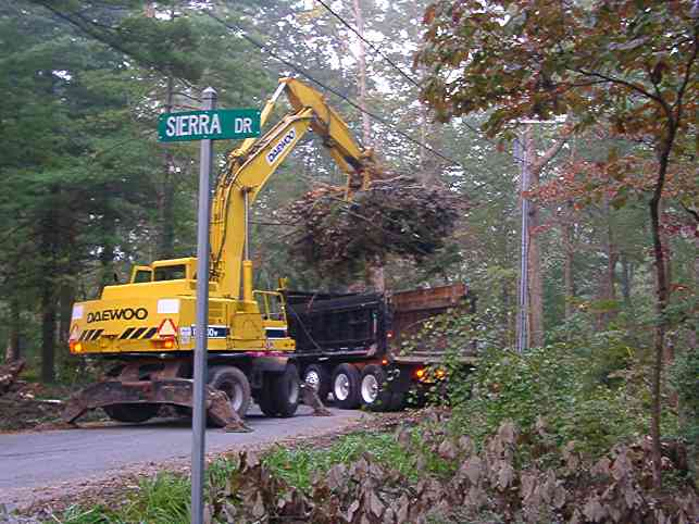 NC Department of Transportation cleaning up the tree trash