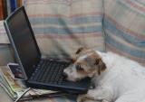 frasier-laptop.jpg