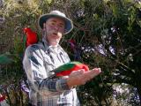 John and some King Parrots