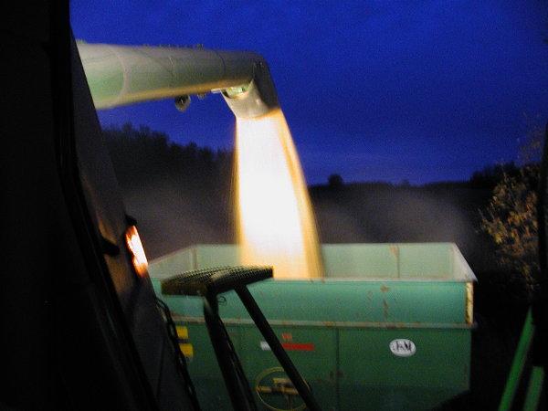 Unloading at night.JPG