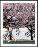 Cherry Blossom 10 Mile 4-4-2004 231a1awF.jpg