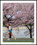 Cherry Blossom 10 Mile 4-4-2004 231a2awF.jpg