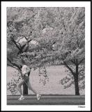Cherry Blossom 10 Mile 4-4-2004 231a3awF.jpg