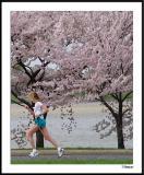 Cherry Blossom 10 Mile 4-4-2004 231a5awF.jpg
