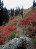 Trail Ascending