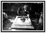 Anna Babiak Szaryj's Grave