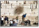 Jerusalem 1435_27_pb.jpg