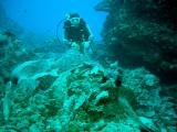Underwater Moai