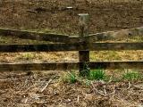 040818 Fence