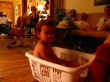 Lounging in basket.jpg