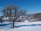 Burgschwalbach 2