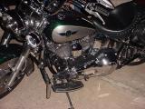 flash nice Harley photo