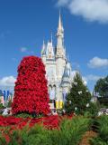 Walt Disney World December 2003