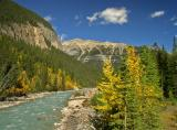 Fall on the Yoho River