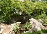 Lewis Vaughn Botanical Garden