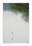 small DSC_9298 calm water.jpg