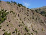 Green cliffhangers