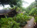 outside home in Utila