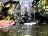 Man in the Waterfall
