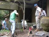 planting the Rector's Garden