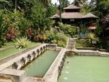 bali hot pools