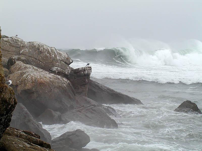 First winter storm swells