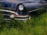 Retired Buick