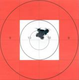 22 magnum target 100 yards, 5 shot group