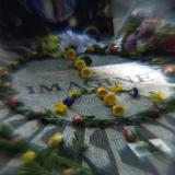 Diane S. IMAGINE...images for Peace... email one!