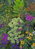 spring-ledge-flowers-8.19.jpg