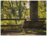 Reading in the Autumn evening Sun