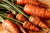Sep 29: Carrot mountain