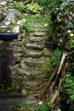 Oct 19: The garden steps